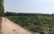 Giá đất Nhơn Trạch đang bị bơm thổi quá căng