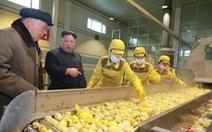 Liên Hiệp Quốc nói Triều Tiên giảm khẩu phần lương thực người dân