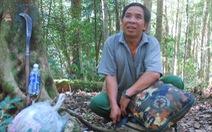 Người tìm ra rừng đỗ quyên ở Tây Giang