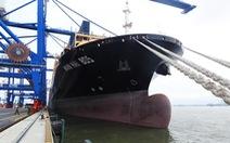 Tàu hàng 'khủng' cập cảng container quốc tế Hải Phòng