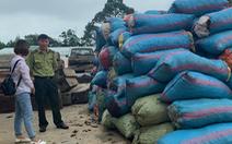 Bắt một người mua gần 3,5 tấn vỏ thông