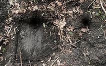 Phát hiện lối vào 'hầm chứa kho báu' ở Ba Lan