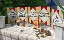 Ứng dụng nano điều chế trà thảo dược ngừa tiểu đường
