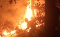 Ngăn đám cháy lan ra đền thờ Hoàng đế Quang Trung