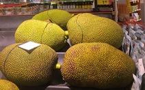 Dân mạng thế giới xôn xao vì trái mít
