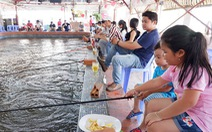 Ngày hè, cả nhà đi câu, ngắm sông Sài Gòn bằng buýt