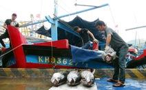Gỡ 'thẻ vàng' cho ngành thủy sản: Còn vi phạm có thể tịch thu tàu?