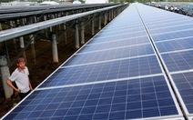 Long An: 3 trên 16 dự án điện mặt trời kịp 'về đích' trước 30-6