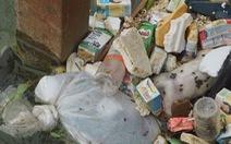 Ớn lạnh với xác heo chết, rác thải trên nguồn nước cấp cho TP Thanh Hóa
