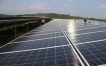 Điện mặt trời gặp khó, tư nhân muốn tham gia xây lưới điện truyền tải