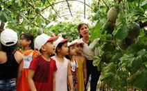 Thầy cô, cha mẹ cuốc đất trồng rau, khoai lang, bí đỏ... đủ cho cả trường