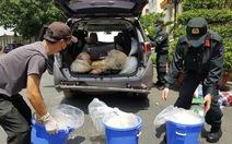 Xuất hiện nguồn ma túy lớn từ Trung Quốc vận chuyển vào TP.HCM