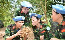 Chờ giây phút... Việt Nam trúng cử Hội đồng Bảo an