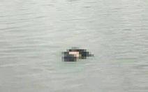 Phát hiện thi thể vợ chồng dạt vào bờ sau hai ngày mất tích trên biển