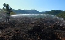 Cháy rừng thiêu rụi 10ha cây cối và 2 xe máy trên bán đảo Sơn Trà
