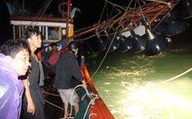 Bình Định quyết liệt khắc phục 'thẻ vàng' về đánh bắt hải sản