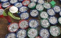 Dốc sức gỡ 'thẻ vàng' hải sản