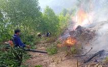 Khởi tố thiếu niên 3 lần đốt rừng để 'trả thù' ở Nghệ An