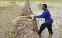 Thái Lan yêu cầu Trung Quốc, Lào, Myanmar xả nước chống hạn ở Mekong