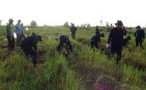 Tìm kiếm hàng ngàn hài cốt liệt sĩ Việt Nam hy sinh trên chiến trường Campuchia