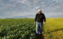 Ông Trump chi 16 tỉ đô lo cho nông dân Mỹ