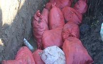 Phạt doanh nghiệp chôn lén gần 2,4 tấn thuốc bảo vệ thực vật