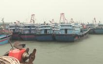 4000 tàu, thuyền đánh cá khẩn cấp vào bờ tránh bão số 2