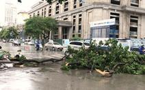 Bão số 2 đã đổ bộ vào đất liền, mưa lớn, sạt lở, cây ngã gãy
