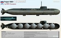 Tổng thống Putin xác nhận tàu ngầm bốc cháy là tàu ngầm hạt nhân