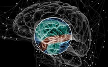 Xác định được loại gen mới có liên quan đến chứng tâm thần phân liệt