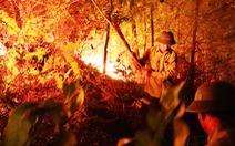 Truy tặng Huân chương Dũng cảm cho người phụ nữ chết cháy khi cứu rừng