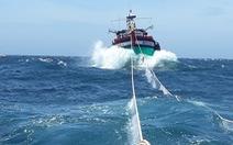 Tàu kiểm ngư cứu 2 tàu cá và 12 ngư dân gặp nạn trên biển
