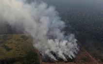 Brazil thừa nhận không đủ sức dập cháy rừng Amazon