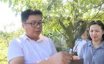 Sắp có thêm 5.000 ha 'cây tỉ đô' từ Macca Nutrition Việt Nam