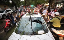 Cây đổ la liệt trên đường phố Hà Nội, 1 người chết, 1 người bị thương