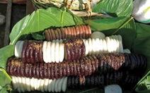 Gặp sắc tím Myitkyina, thương bánh giầy Việt