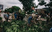 Bão số 4 đổ bộ Hà Tĩnh - Quảng Bình, suy yếu thành áp thấp nhiệt đới