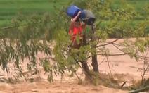 Video: Mưa lũ ở vùng cao Thanh Hóa, 12 người dân mất tích