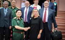 Hợp tác quốc phòng Việt Nam - EU phát triển tích cực