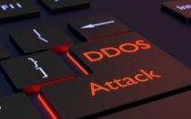 114 cuộc tấn công từ chối dịch vụ vào website Việt Nam