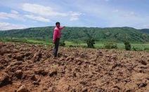 10 năm không giải phóng mặt bằng, dự án chăn nuôi nợ hơn 80 tỉ