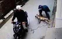 Từ đầu năm đến nay, nhóm nghi phạm ở Thanh Hóa trộm, tiêu thụ hơn 100 tấn chó