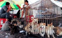 TP.HCM khuyên dân bỏ ăn thịt chó