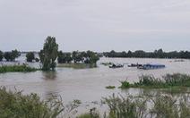 Lũ đầu nguồn sông Cửu Long trên báo động 1, diễn biến phức tạp