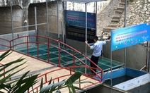 Cá Koi sông Tô Lịch có bảo vệ trông coi cả ngày lẫn đêm