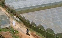 Ngăn rủi ro từ phong trào nông nghiệp nhà kính