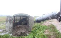 Lối tự mở xảy ra tai nạn giữa tàu hàng và xe tải đã được cảnh báo?