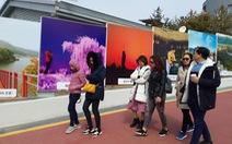 Người Việt đổ đến Hàn Quốc làm đẹp khiến người Hàn cũng ngạc nhiên