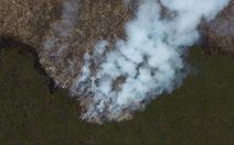 Mưa nhân tạo giúp Indonesia giảm được 90% số vụ cháy rừng