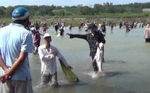Video: Hàng trăm người bắt cá khủng dưới chân đập xả tràn